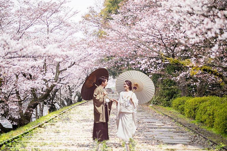 京都 南禅寺 蹴上インクライン 桜
